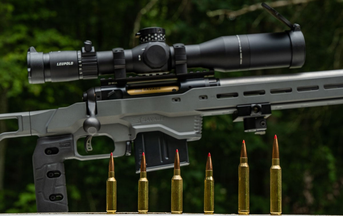 cartridges for long range shooting
