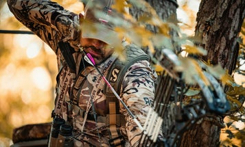 Hang the Perfect Tree Stand: 4 Setups Where Deer Can't Bust You