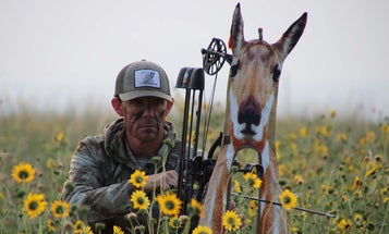 Don't Laugh, It Works: Dupe an Early Season Pronghorn with a Decoy
