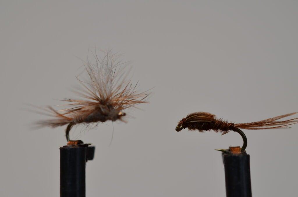 Adams Parachute and Pheasant Tail trout flies