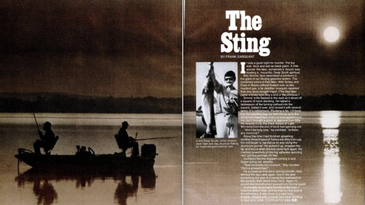 Catfishing story from Field & Stream magazine