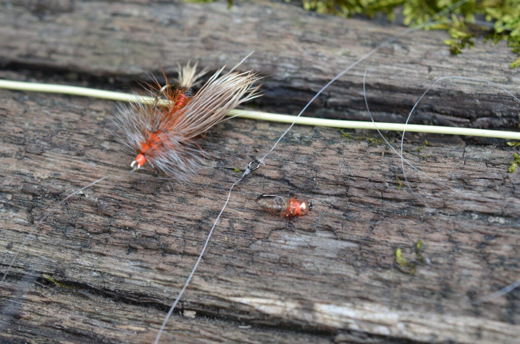 Deadly Trout-Fly Combos for Hopper-Dropper Rigs