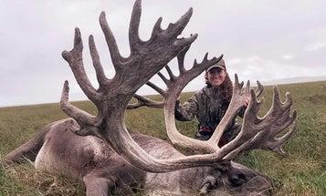 Alaskan Woman Takes 460-Plus-Inch Caribou Bull on Remote Solo Hunt