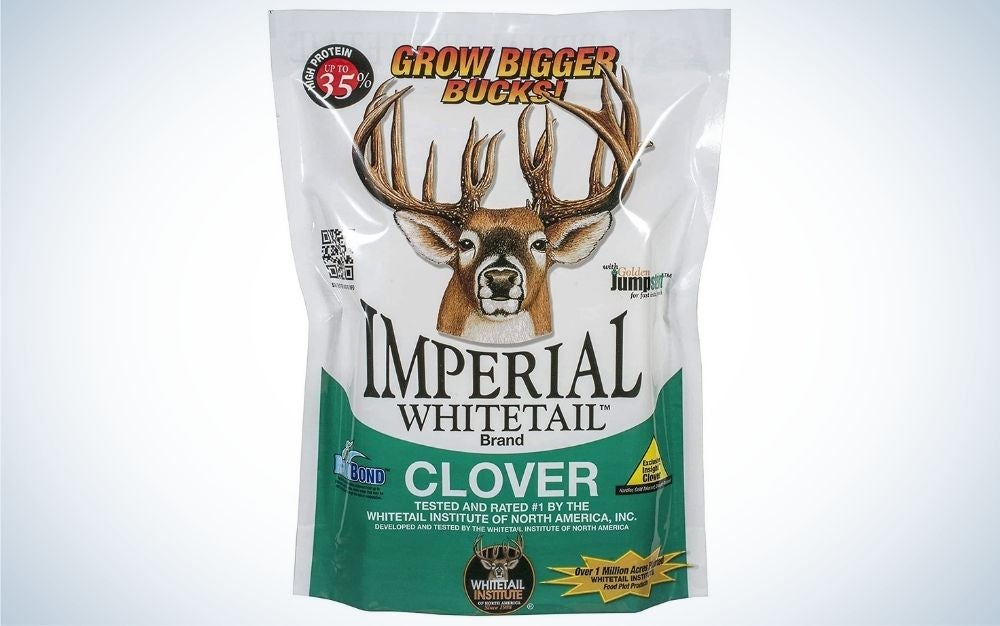Imperial clover is our pick for best food plot for deer