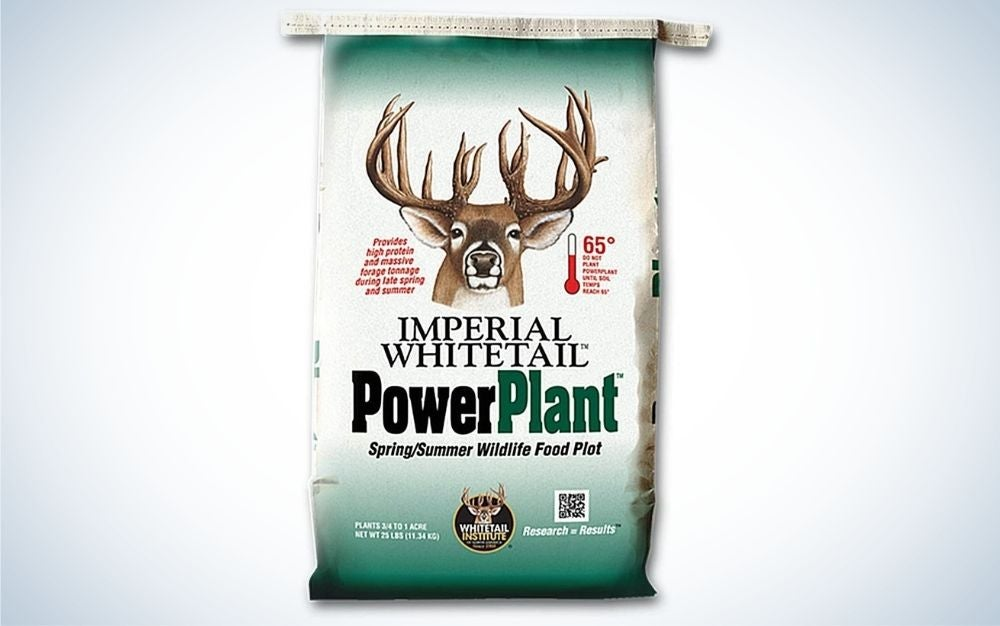 Power plant is our pick for the best food plot for deer
