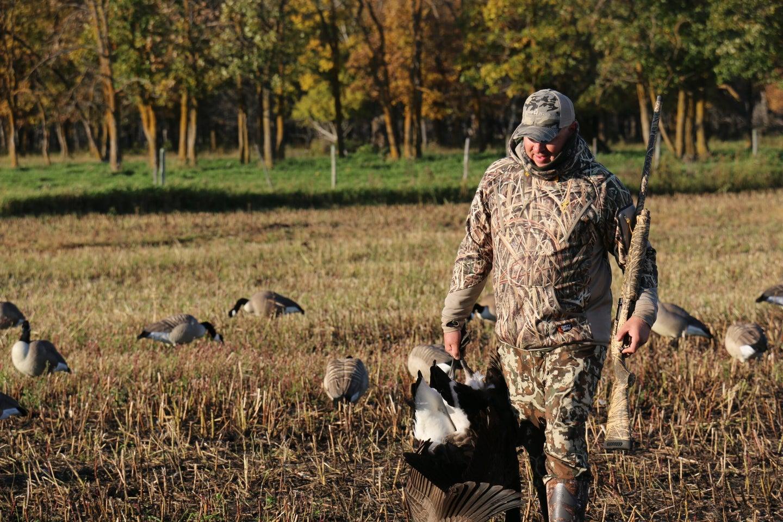 Canada goose hunter in the early season