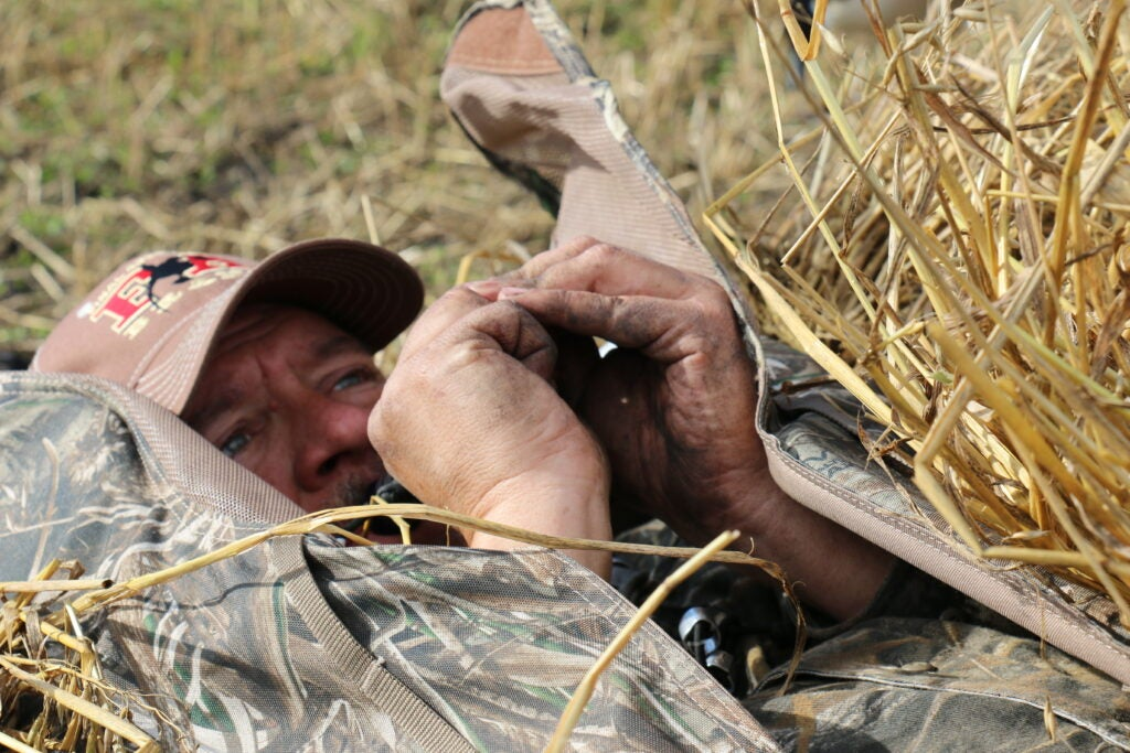 Goose hunter calls for Canada geese
