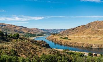 Dismal Runs Force Oregon and Washington to Close World-Famous Steelhead Fisheries