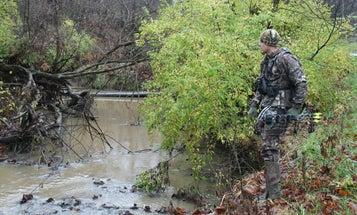 The Secret to Tagging Early Season Public Land Bucks is Water