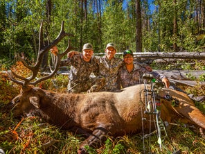 Hunting Public Land Elk? Forget 300-Inch Bulls and Just Have Fun