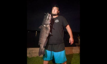 """""""I Was Shocked!"""" Connecticut Angler Lands Potential World Record White Catfish"""