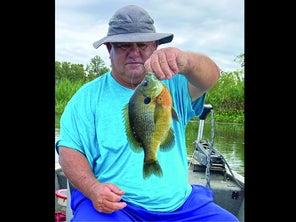 Georgia Angler Lands Record 1-Lb., 7.68-Oz. Bluegill