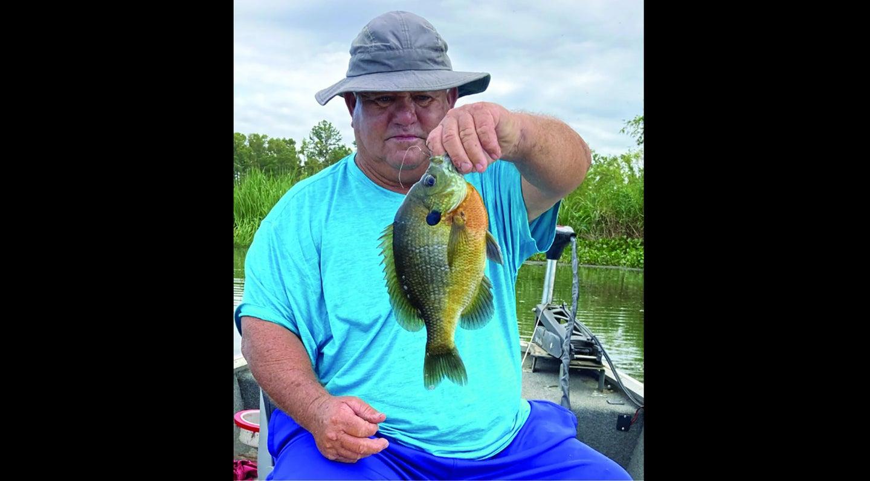 Man holding record bluegill fish.