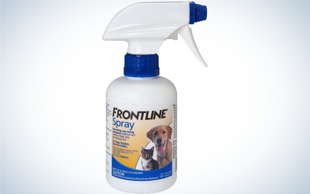 Frontline Spray is the best flea and tick prevention for dogs.