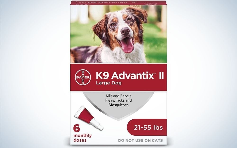 K9 Advantix the best flea and tick protection for dogs.