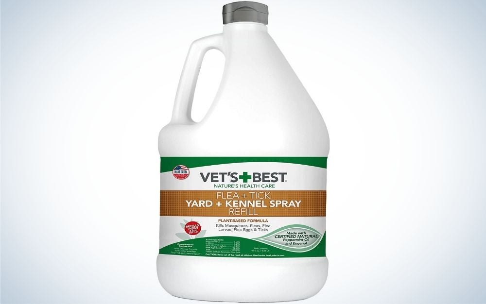 Vet's best treatment is the best flea and tick protection for dogs.