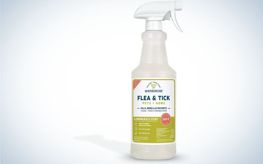 Wondercide spray is the best flea and tick protection for dogs.