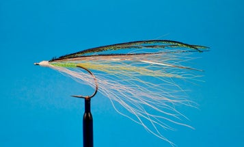 These Old-School Striper Patterns Are Still Deadly During the Fall Run