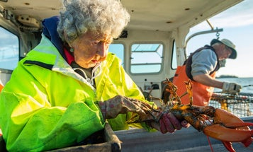"""""""They Call Me the Lobster Lady!"""" This 101-Year-Old is Still Catching Big Bugs"""