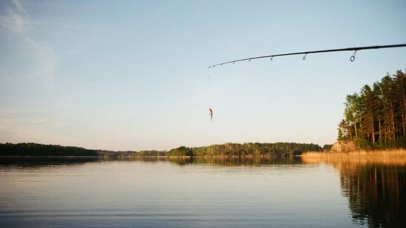 The Best Spinning Rods for Bass, Trout, Surf Fishing, and More
