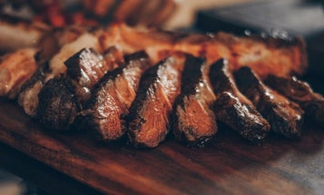 Better Meals With The Best Wood for Grilling