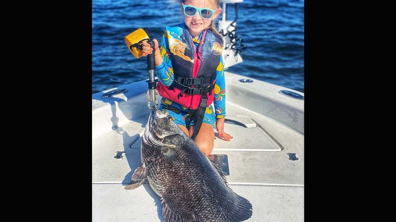 6-Year-Old Catches Potential IGFA Smallfry Record Tripletail