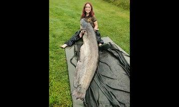 British Teenager Catches Behemoth 96-Pound Wels Catfish