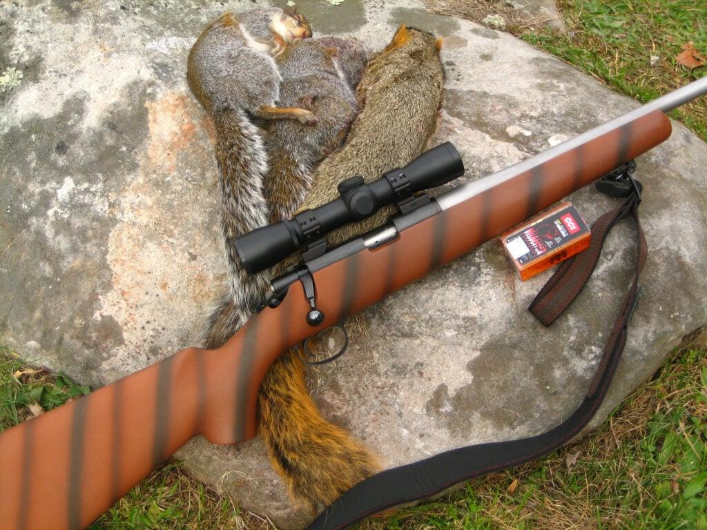 .22 rimfire rifle