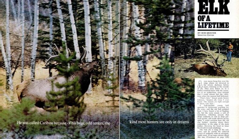 Elk hunting story in Field & Stream