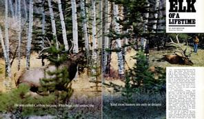 F&S Classics: Elk of a Lifetime
