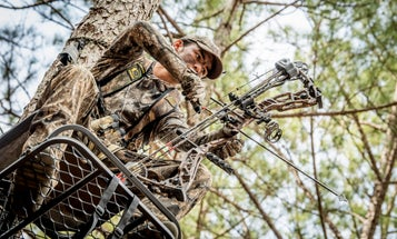 No Time To Hunt? Here's How To Make The Most Of Deer Season
