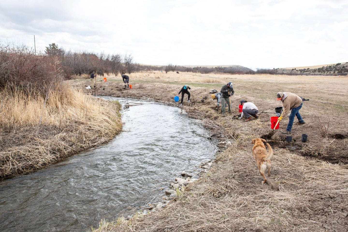 SIMMS river cleanup