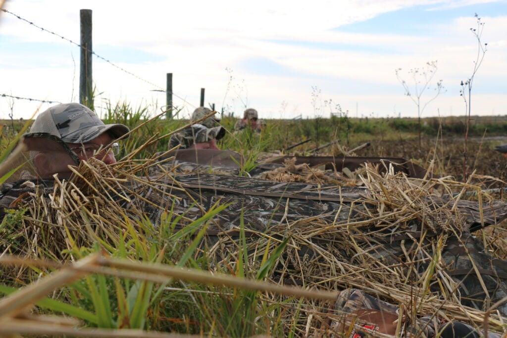 hunters wait for ducks in a field