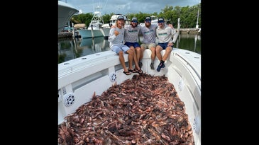 Four guys on boat with hundreds of lionfish littered across the baot