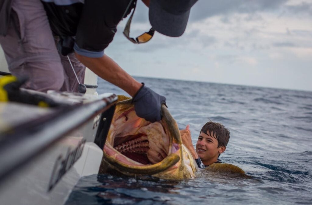 boy in water with big goliath grouper