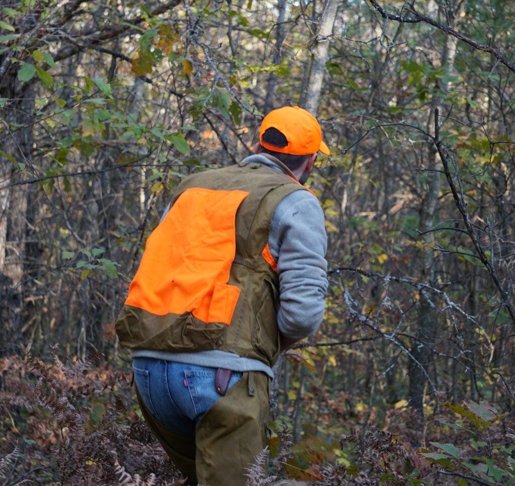 Hunter in orange walking through the woods.