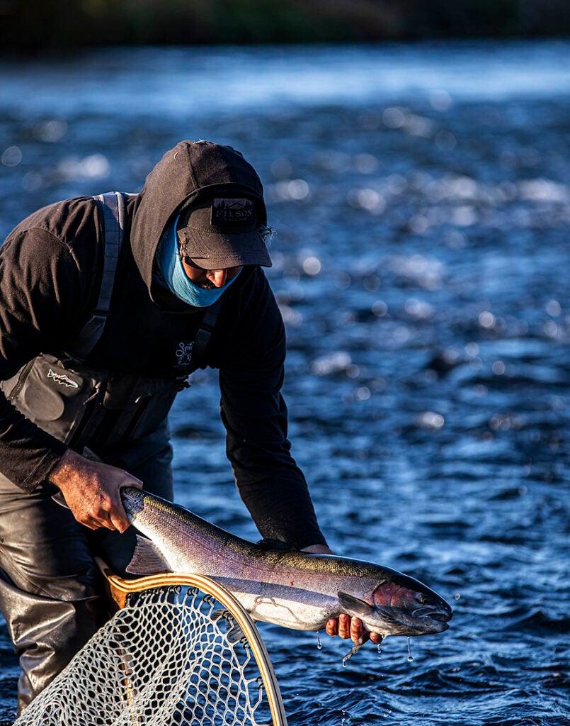 Fisherman releases a steelhead