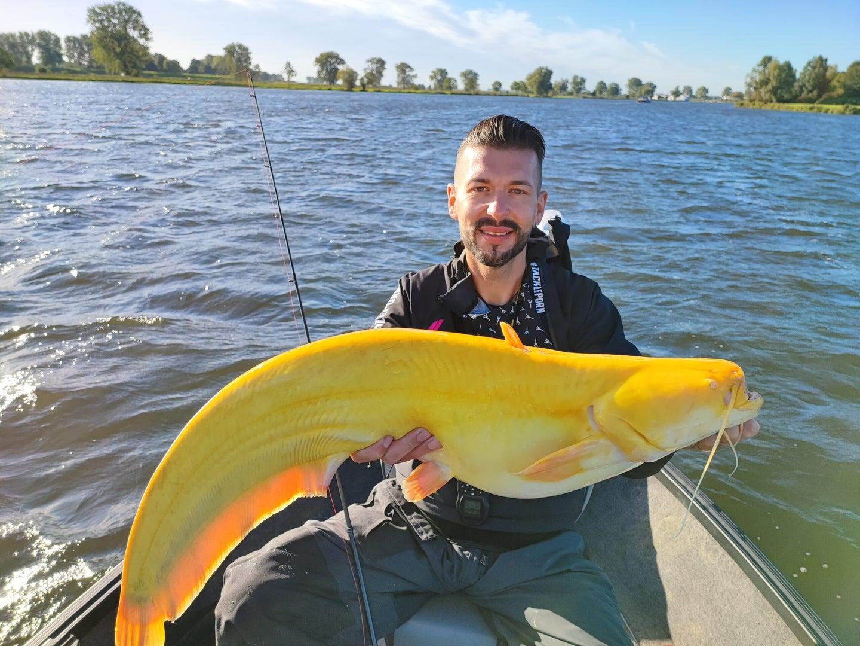 angler holds large yellow catfish