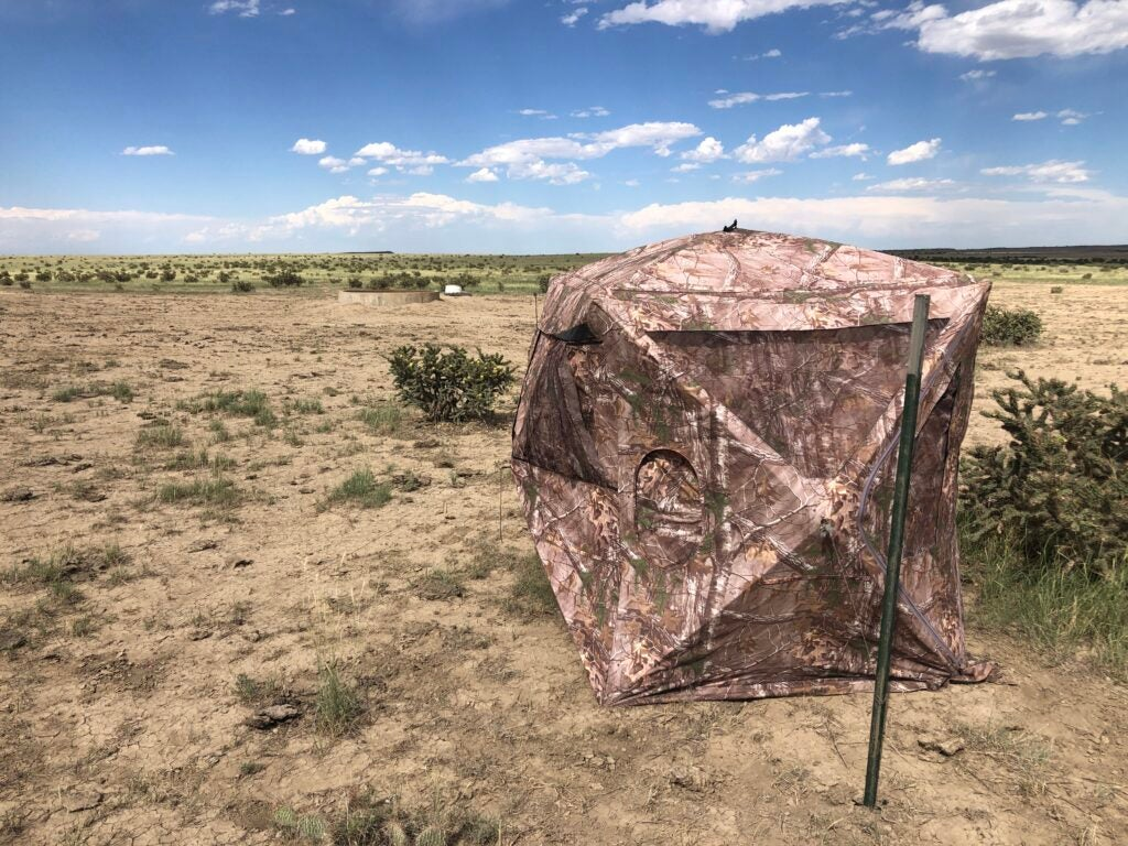 ground blind near pronghorn water hole